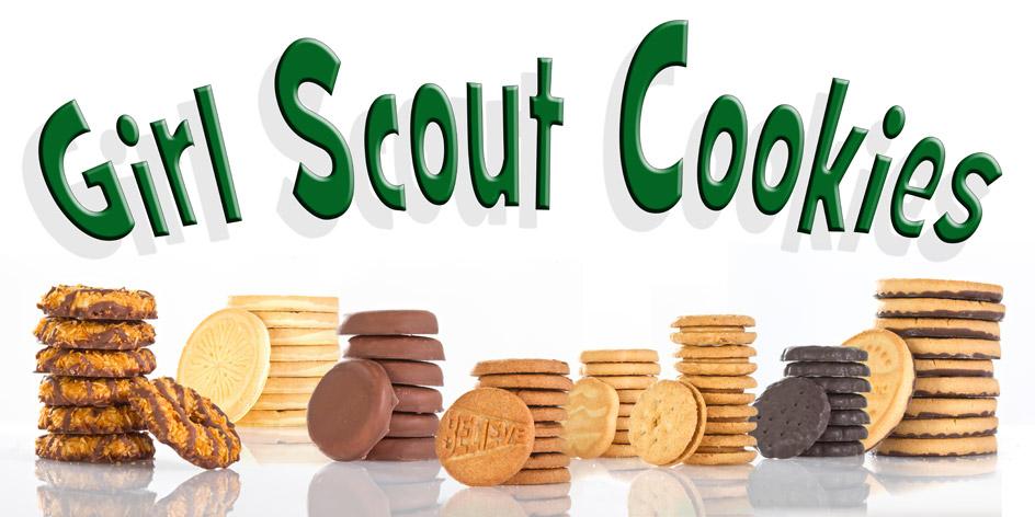 United methodist church girl scout troop 151